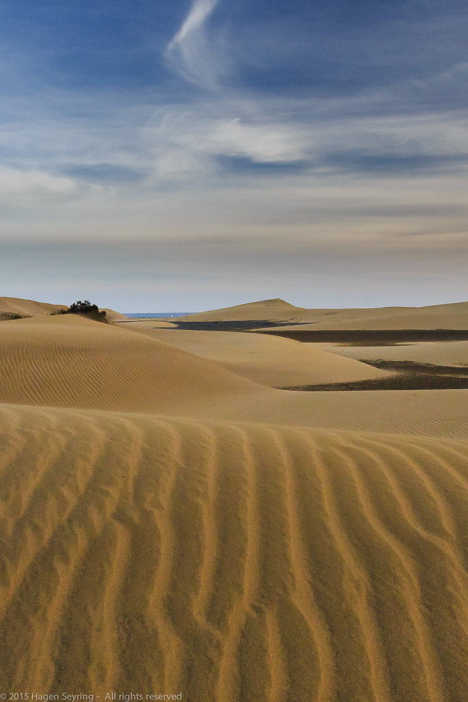 Dunes of Masplaomas