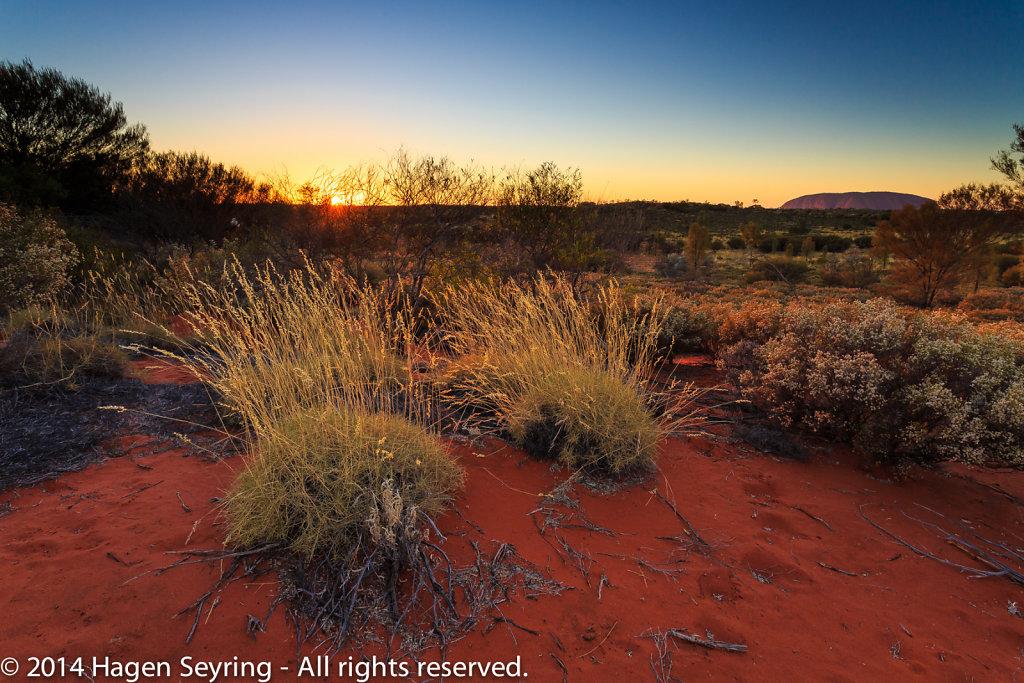 Sunrise on the Uluru