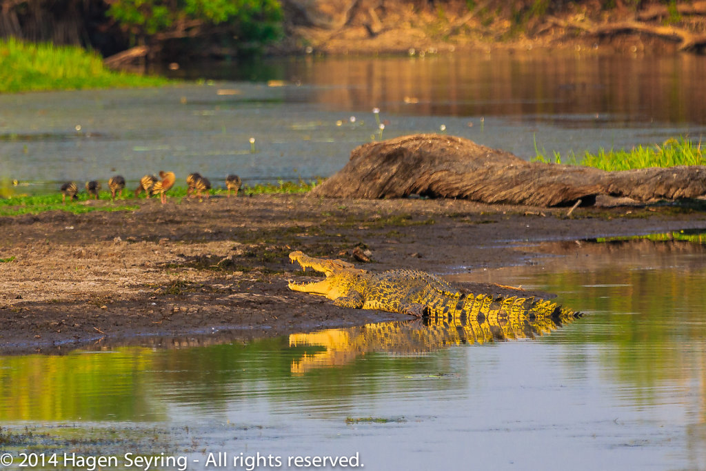 Kakadu and Litchfield National Park