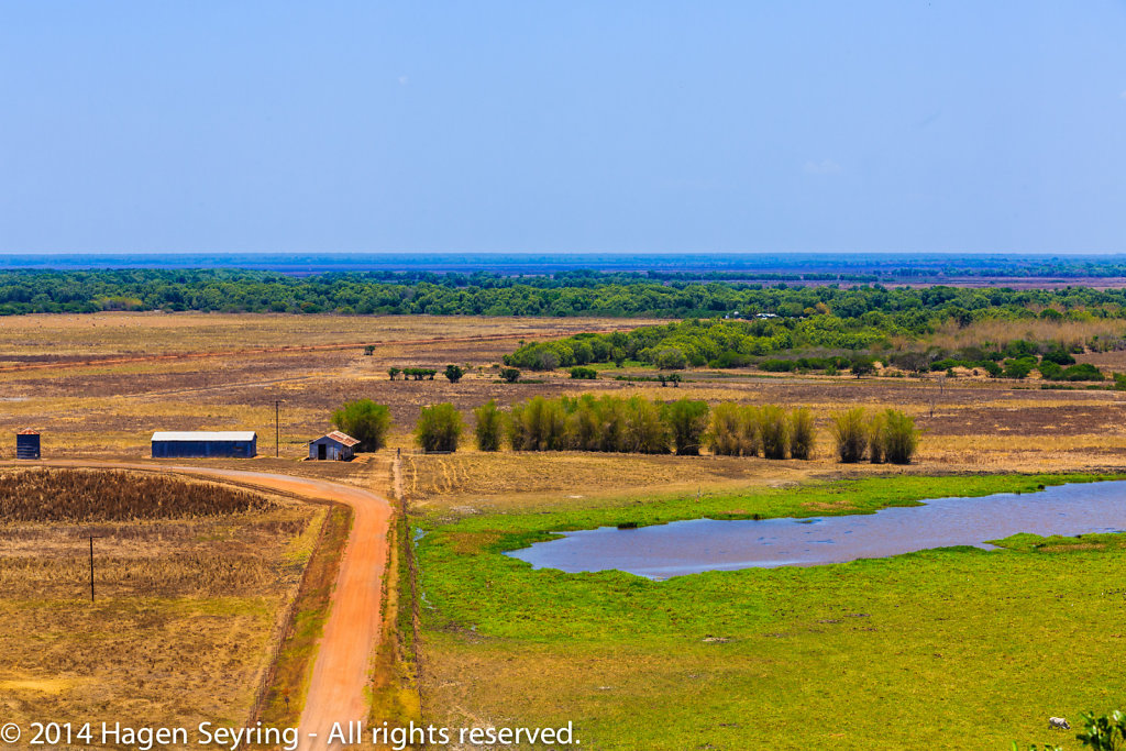 """View from the """"Window on the Wetlands"""" on the toip of the Beatri"""