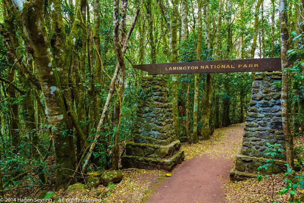Entry into the Lamington National Park to the Main Border Track