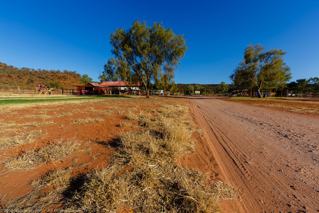 Outback Camel Farm