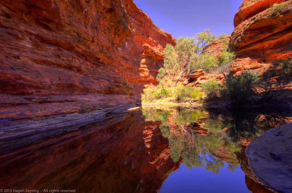 Waterhole in the garden Eden in the Kings Canyon