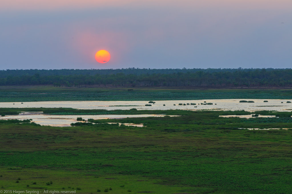 Sunset over the wetlands